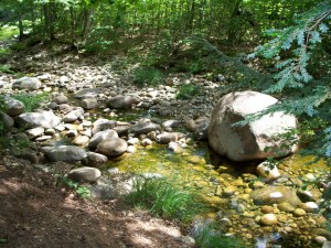 100 03391 300x225 NH Campground   Goose Hollow # 1 In New Hampshire